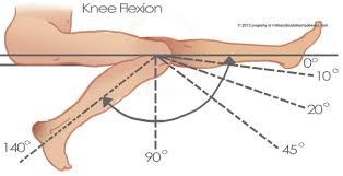 Knee Range Of Motion And Movements Bone And Spine