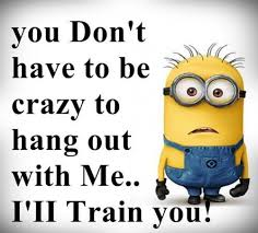 50 of the most quirky and funny minion es