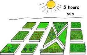 how to lay out a garden. Planning A Vegetable Garden Layout How To Lay Out