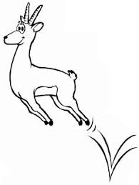 Small Picture gazelle Google Search Line Drawings for Literacy Pinterest