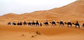Image result for sahara africa deserts
