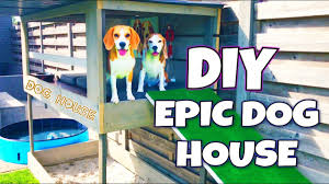 <b>DIY Dog</b> House with Pool , Sandbox and <b>Dog</b> Lounge | Louie The ...