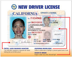 Darleeneisms New California Driver Licenses
