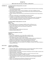 Intelligence Resume Intelligenceesume Junior Analyst Samples Velvet Jobs Sample Business 13