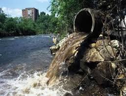 Resultado de imagem para água poluida