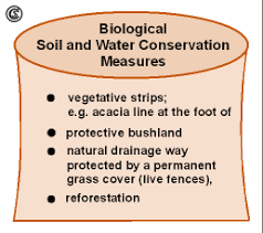 biological soil and water conservation measures bull learning content biological soil and water conservation measures