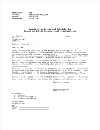Cover Letter Internship International Organization Ameliasdesalto Com