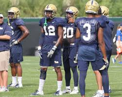 Which Position On The Pitt Depth Chart Are You Most