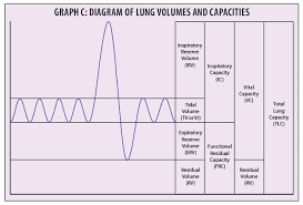 Lung Capacity Test Chart Reach Full Capacity Of Pulmonary Function Test Coding Aapc