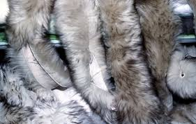 tanned animal skins and artificial furs can be bought there too they are easier to work with than raw skins and last much longer