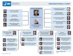 Cdc Organizational Chart Solved Q7a Synthesis Innovation With Reference To The O