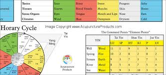 Source Points Chart The Five Elements Of Acupuncture Poster 24 X 36