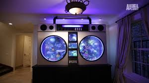 Fish Tank Jimmy Butlers 6000 Lb Boombox Fish Tank Youtube