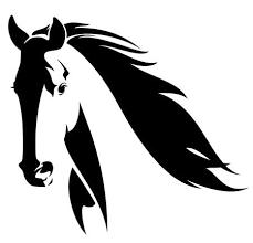 Paardenhoofd Fotos Afbeeldingen En Stock Fotografie 123rf