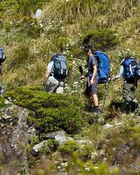 backpacking skills for beginners backpacking  hiking group essays