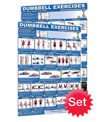 Dumbbell Workout Chart Buy Laminated Dumbbell Posters 2 Set Created By