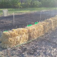 how to start a straw bale garden
