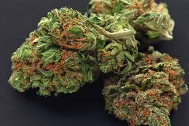 Image result for online marijuana dispensary