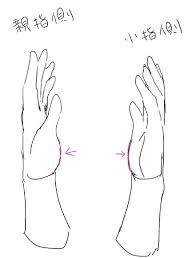イラスト講座手の描き方実践編 イラスタート Anatomy2019