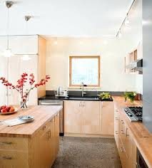 cool track lighting. Cool Track Lighting Themed Kitchen Eliminates Any Possible Dull Corners O
