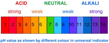 Ph Level Neutral Acidic Or Basic Derya Sunkel