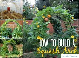Small Picture How To Build a Squash Arch or Trellis httpwwwdiyamazingideas