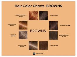 Hairstyles The Only Hair Colour Chart For Indian Skin