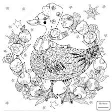 Childrens Christmas Pictures To Colour L Duilawyerlosangeles