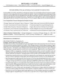 Executive Summary Resume Example Executive Summary Report Example