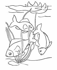 Pet Fish Coloring Pages Free Printable Tropical Fish Pet
