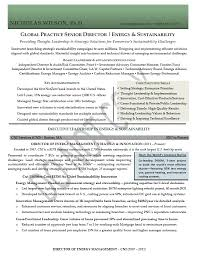 Director Resume Examples Adorable Executive Resume Sample Senior Director Executive Resume Sr