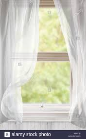 open window with curtains. Unique Curtains Open Window With Voile Curtains Blowing In The Breeze  Stock Image With Window Curtains I