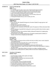 On Air Personality Resume Sample Bar Server Resume Sample 60 Examples mhidglobalorg 54