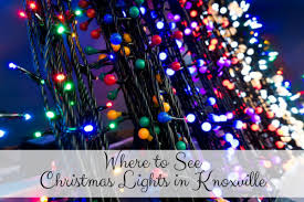A Colorful Christmas Loft In Knoxville TennesseeThe Living Christmas Tree Knoxville Tn