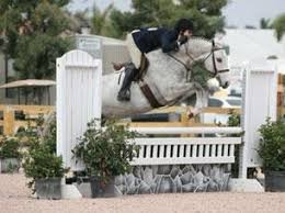 Patricia Griffith and Sway Glide to Victory in the Pre-Green 3' Hunters |  Horses Daily