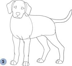 Small Picture Dalmatian Puppy Learn to Draw Dogs Puppies Book