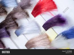Bright Hair Color Chart Hair Color Chart Image Photo Free Trial Bigstock