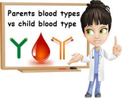 parent blood types chart blood type based on parents natureword