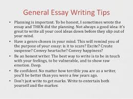 success in creative writing exams techniques 13 general essay writing tips bull planning is important