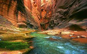 Nature Photography Wallpapers posted by ...