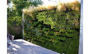 ... Cuddington Living Wall ...