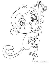 Jungle Animals Coloring Page Monkey Picture Monkey Coloring Page