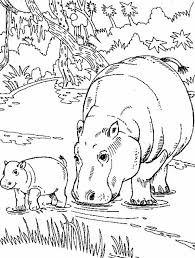 Small Picture Hippo Eating with Her Baby Coloring Page NetArt