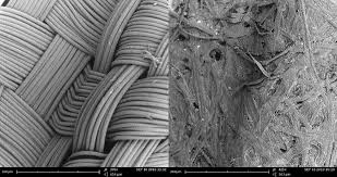 Scanning Electron Microscope Comparison Of Creases In