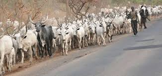 Image result for Don't treat Herdsmen attacks with levity, PDP tells Adamawa govt