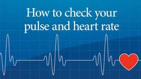 Active Pulse Rate Chart How To Get Your Heart Rate Up Md Anderson Cancer Center