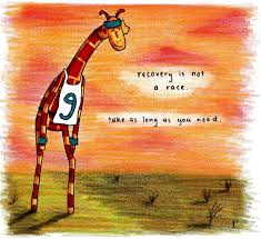 Giraffe Quotes Magnificent 48 Best Quotes Shit Images On Pinterest Book Lists Book Lovers
