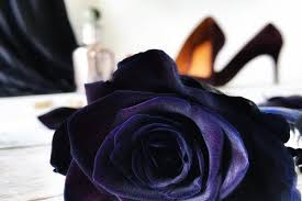 The Magic and Mystery of our Top 10 <b>Black Flowers</b> - Interflora
