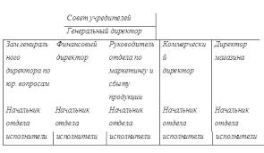 Отчет по практике Анализ коммерческой деятельности предприятия Рисунок 2 1 1 Организационной структуры предприятия линейная организационная структура