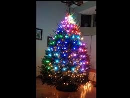 Xmas Tree Light Show Spectacle